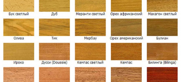 цветовые оттенки древесины